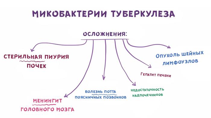 Шестой слайд