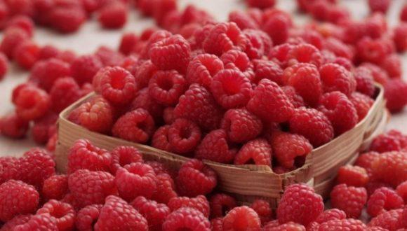 В чем польза малины для здоровья?